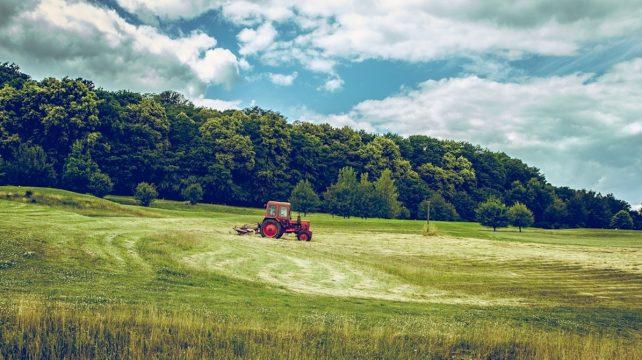 農業におけるイノベーション事例