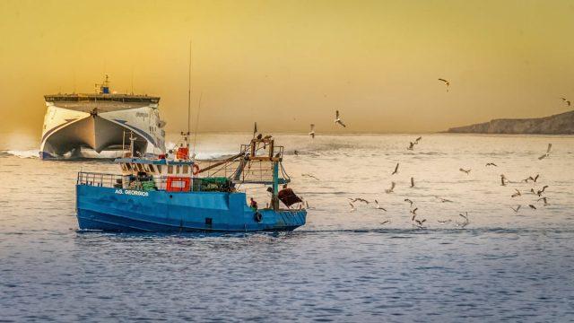 漁業を支えるイノベーション事例