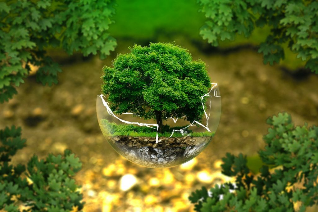 グリーンイノベーションとは?徹底解説します